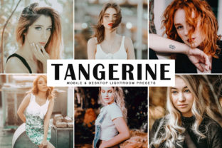 Tangerine Lightroom Presets Pack Graphic By Creative Tacos