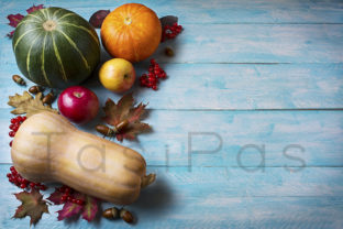 Thanksgiving  Greeting with Pumpkins Graphic By TasiPas