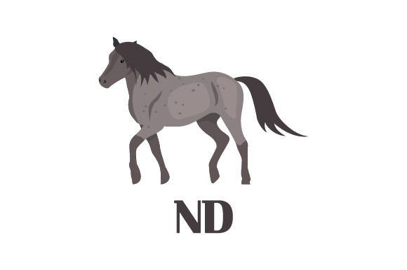 Download Free The Nokota Horse Nd Svg Cut File By Creative Fabrica Crafts for Cricut Explore, Silhouette and other cutting machines.