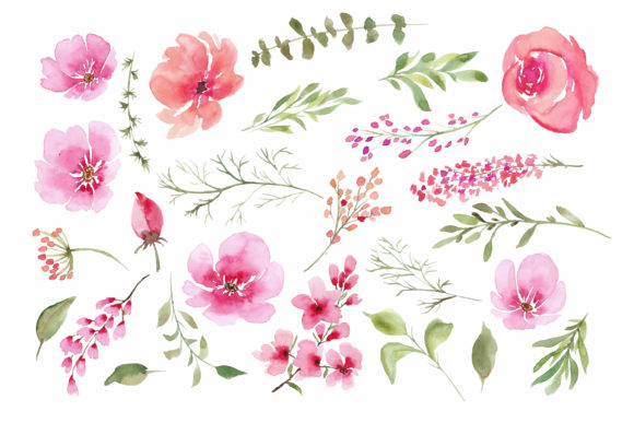Print on Demand: Watercolour Clipart Graphic Illustrations By Primafox Design - Image 2