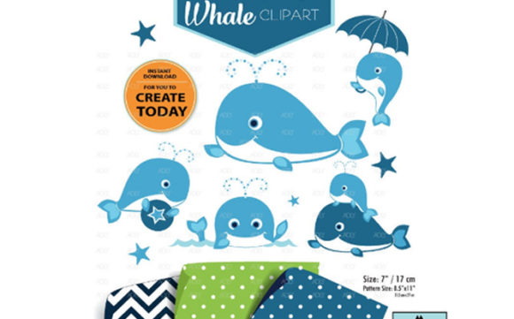 Print on Demand: Whale Clip Art Graphic Illustrations By adlydigital - Image 2
