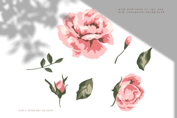 Wild Rose Illustration Graphic Illustrations By BilberryCreate - Image 6