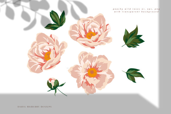 Wild Rose Illustration Graphic Illustrations By BilberryCreate - Image 7