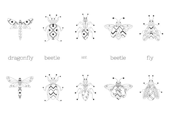 Zenart Vector Insects Collection Graphic Illustrations By Tatyana_Zenartist - Image 2