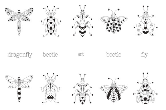 Zenart Vector Insects Collection Graphic Illustrations By Tatyana_Zenartist - Image 5