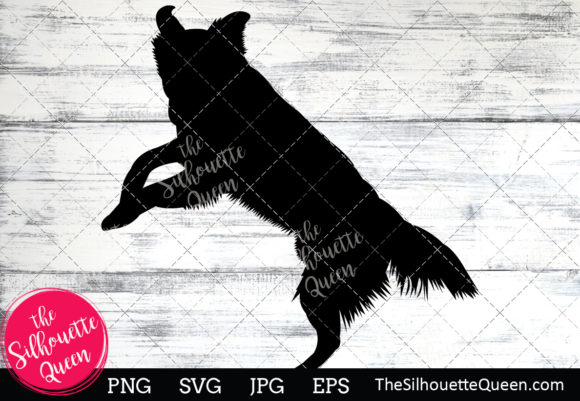 Download Free Border Collie Dog Graphic By Thesilhouettequeenshop Creative for Cricut Explore, Silhouette and other cutting machines.