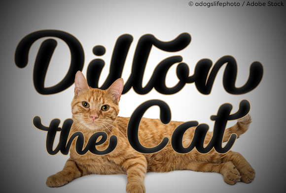 Download Free Dillon The Cat Font By Misti Creative Fabrica for Cricut Explore, Silhouette and other cutting machines.