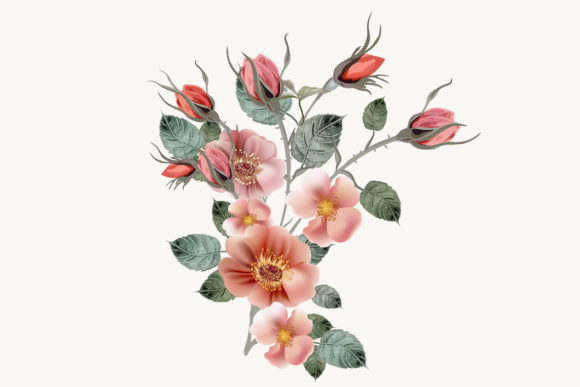 Download Free Rose Hip Vector High Detailed Clip Art Graphic By Fleurartmariia for Cricut Explore, Silhouette and other cutting machines.