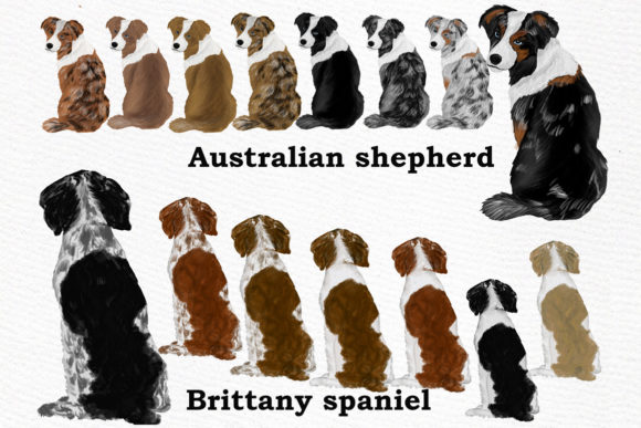 Dog Clipart, Dog Breeds, Pet Clipart Graphic Illustrations By LeCoqDesign - Image 2