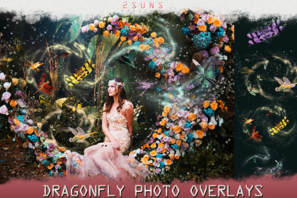 Dragonfly Overlays Graphic Layer Styles By 2SUNS