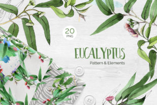Eucalyptus Branch Watercolor Png Graphic By MyStocks