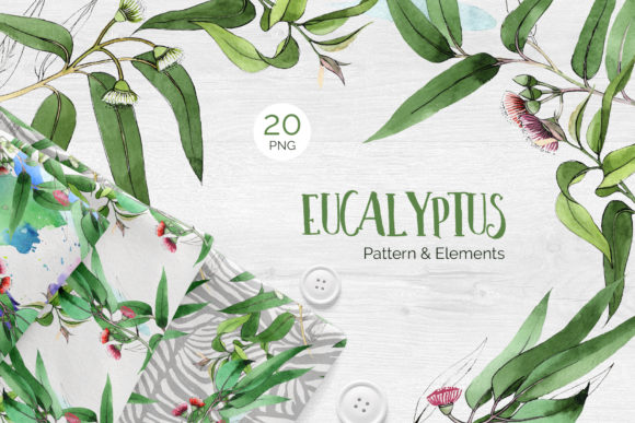Print on Demand: Eucalyptus Branch Watercolor Png Graphic Illustrations By MyStocks