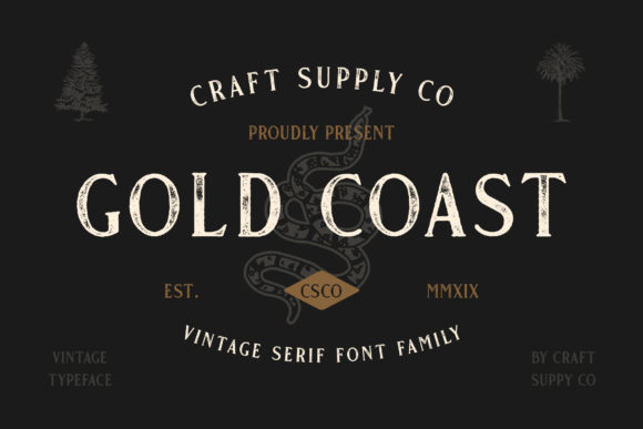 Gold Coast Serif Font By craftsupplyco