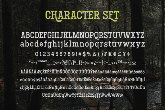 Hodgeson Font By Arterfak Project Image 8