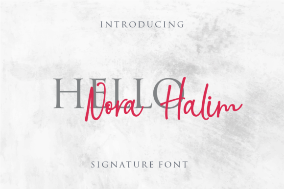 Print on Demand: Nora Halim Script & Handwritten Font By LetterBeary