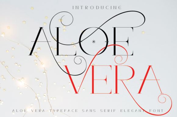 Print on Demand: Aloe Vera Sans Serif Font By jehansyah251 - Image 2