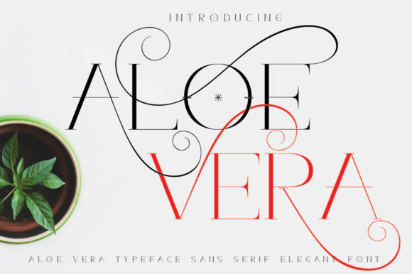 Print on Demand: Aloe Vera Sans Serif Font By jehansyah251