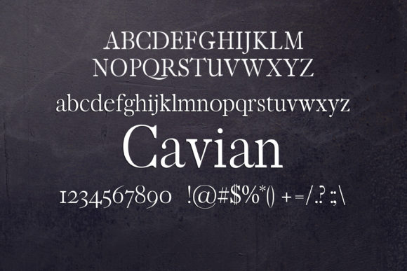 Print on Demand: Cavian Serif Font By maxim.90.ivanov - Image 2