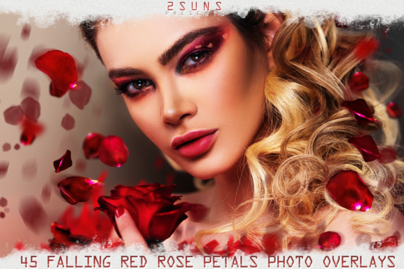 Falling Rose Petals Photo Overlays Graphic Layer Styles By 2SUNS