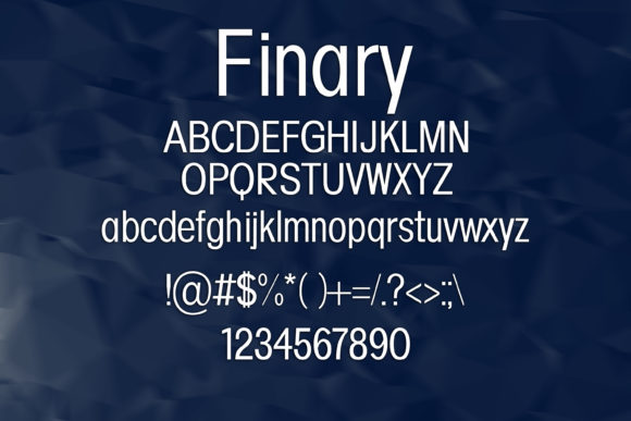 Print on Demand: Finary Sans Serif Font By maxim.90.ivanov - Image 2