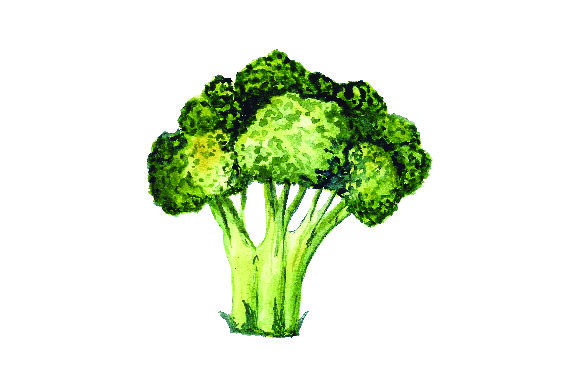 Broccoli - Watercolor Style Craft Design By Creative Fabrica Crafts