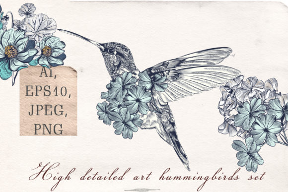 Collection of Vector Hummingbirds Vol.2 Graphic Objects By fleurartmariia