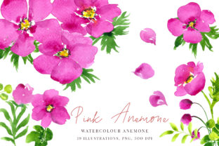 Watercolour Pink Anemones Graphic By Primafox Design