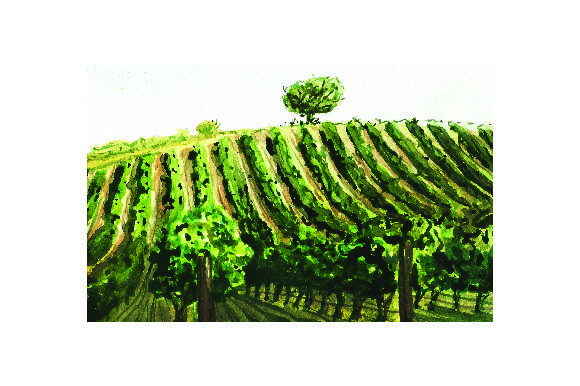 Vineyard - Watercolor Style Wine Craft Cut File By Creative Fabrica Crafts