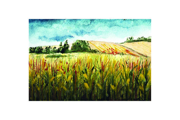 Corn Field - Watercolor Style Farm & Country Craft Cut File By Creative Fabrica Crafts - Image 1