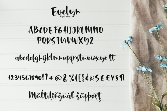 Print on Demand: Evelyn Script & Handwritten Font By Pasha Larin - Image 8