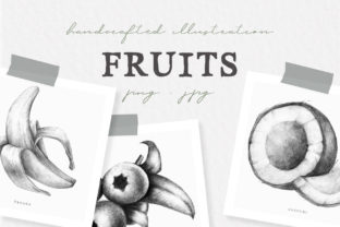 Hand Drawn Fruit Collection Illustration Graphic By nantia