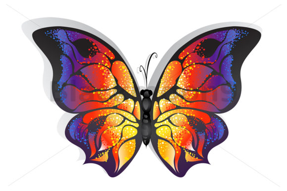 Bright Butterfly Graphic Illustrations By Blackmoon9