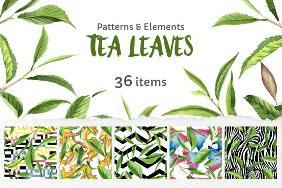 Print on Demand: Green Tea Leaves Watercolor Png Graphic Illustrations By MyStocks