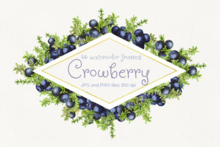 14 Frames with Watercolor Crowberry Graphic By Natalia Arkusha