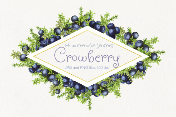 Print on Demand: 14 Frames with Watercolor Crowberry Graphic Objects By Natalia Arkusha