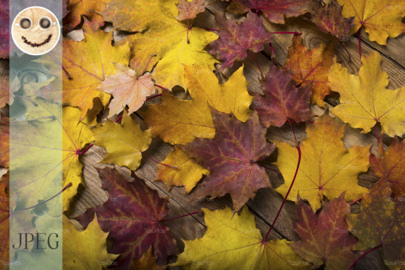 Print on Demand: Rustic Table with Fall Maple Leaves Graphic Nature By TasiPas