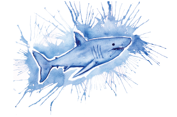 Download Free Shark In Paint Splatter Watercolor Style Svg Cut File By for Cricut Explore, Silhouette and other cutting machines.