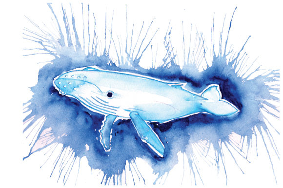 Download Free Whale In Paint Splatter Watercolor Style Svg Cut File By for Cricut Explore, Silhouette and other cutting machines.