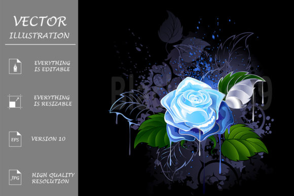 Blue Rose Graphic Illustrations By Blackmoon9