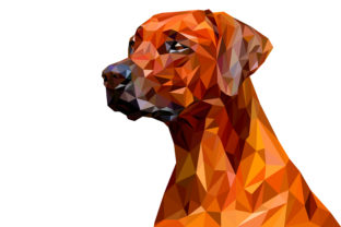Download Free Dog Low Poly Graphic By Manuchi Creative Fabrica for Cricut Explore, Silhouette and other cutting machines.