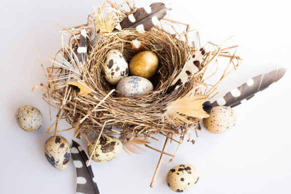 Easter Composition with Bird Nest Eggs Graphic Holidays By fleurartmariia - Image 1