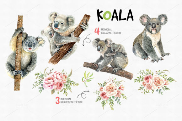 Print on Demand: Koala Bear Animals Watercolor Cliparts Graphic Illustrations By SapG Art - Image 2
