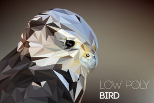 Low Poly Bird Graphic By Manuchi Creative Fabrica