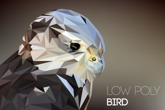 Low Poly Bird Graphic Illustrations By Manuchi