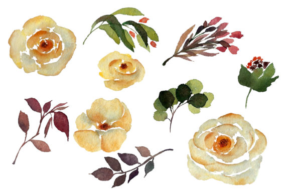 Print on Demand: Watercolour Yellow Rose Graphic Illustrations By Primafox Design - Image 3