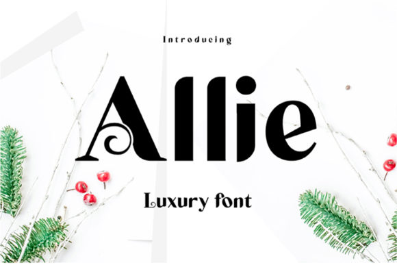 Allie Display Font By ed.creative