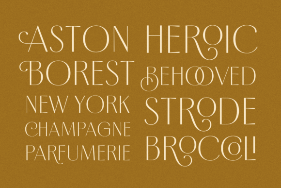 Borest Font By flavortype Image 5