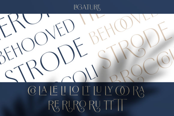 Borest Font By flavortype Image 17