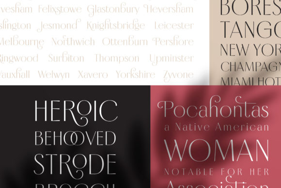 Borest Font By flavortype Image 19
