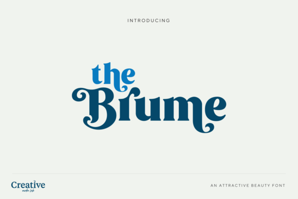 Print on Demand: Brume Display Font By creativemedialab - Image 7